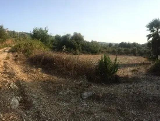 Sie Sind In Der Ortschaft Von Der Farm Grundstück 600 M2 Grundstück Zum Verkauf Mit Aussicht Auf Die Natur
