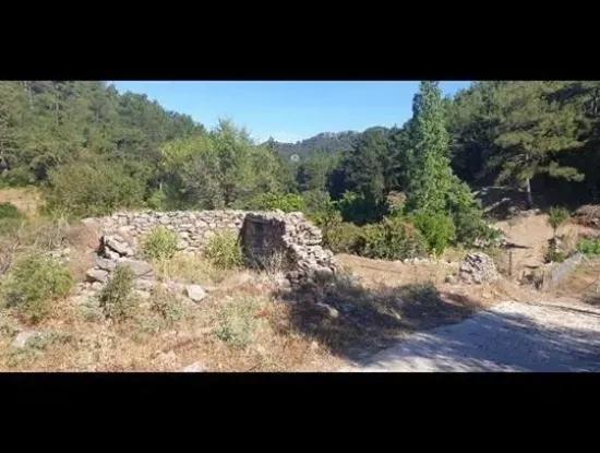 2 Häuser Zum Verkauf In Bair Dorf, 131 M2 Grundstück Auf Dem Grundstück Mit