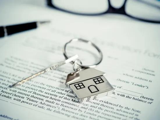 Immobilien Artikel