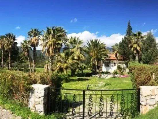 Mesudiye Datca Seafront Villa In The Plot 4200M2