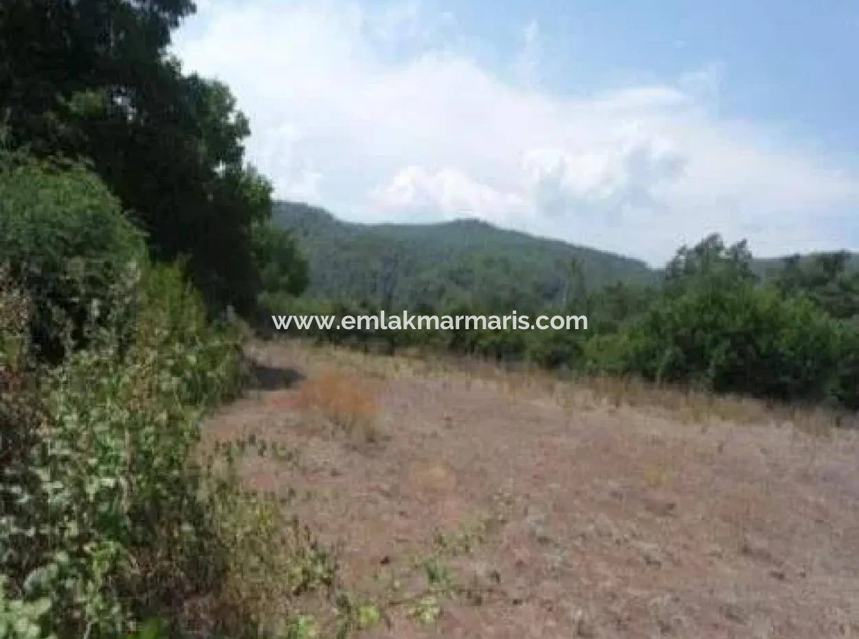 Çetibeli Köyünde Asfalt Yola Cepheli 5600 M2 Yatırım İçin Uygun Arsa Satılık