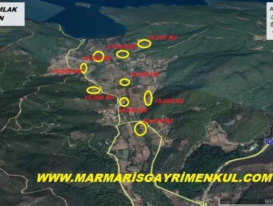 Marmaris Çamlı Köyünde 25.000 M2 Satılık Çok Acil Arsa