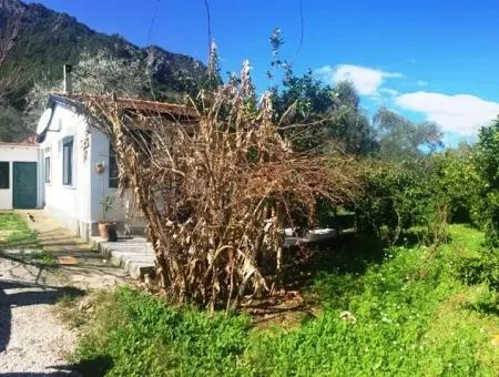 Marmaris İlçesi Turgut Köyünde 4 Villa İmarlı 2300M2 Satılık Arsa