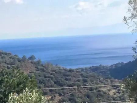 Muğla İli Datça İlçesi Mesudiye Mahallesinde 52000M2 Parselasyonu Yapılmış Deniz Manzaralı Satılık Arsa