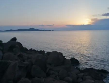 Bodrum Yalıkavak İlçesinde 4600M2 Turizm İmarlı Denize Sıfır Satılık Arsa